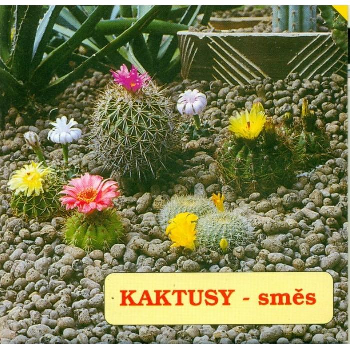 Kaktusy směs
