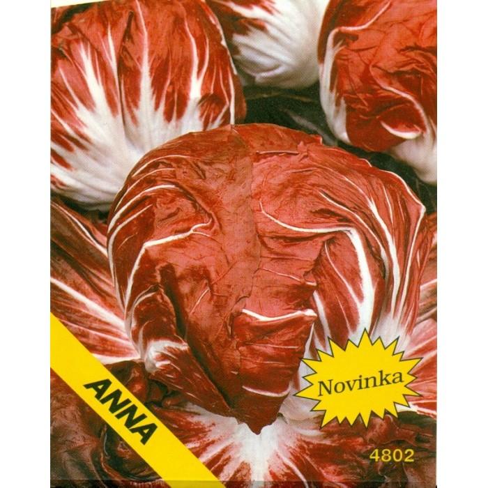 Čekanka - Palla rossa