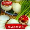 Vodnice, Tokyo cross F1
