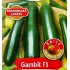 Gambit F1