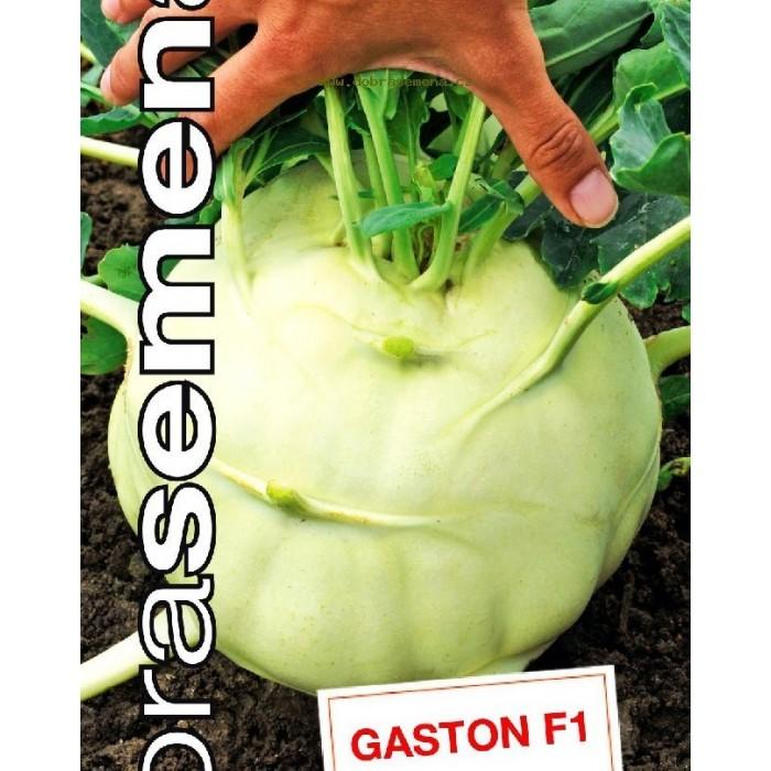 Gaston F1