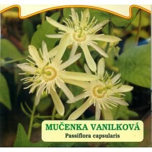 Mučenka vanilková