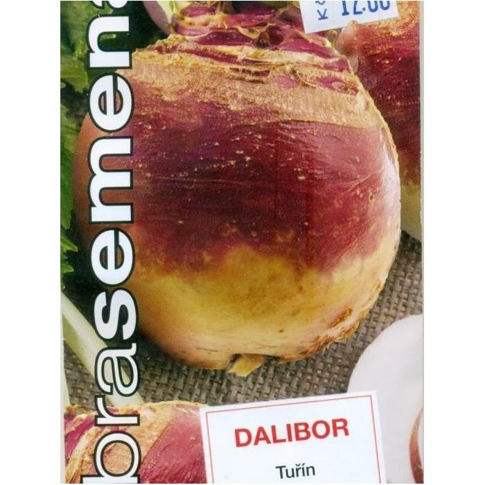 Tuřín Dalibor