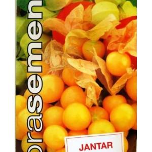 Mochyně ananasová, Jantar