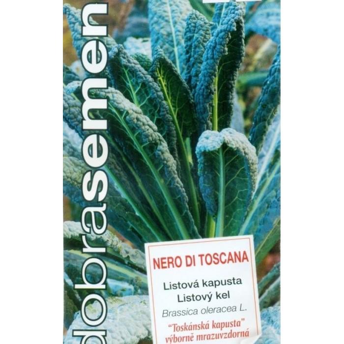 Nero Di Toscana, kapusta listová