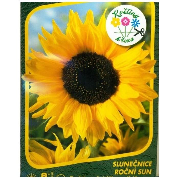 Slunečnice Sun