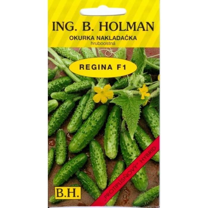 Regina F1
